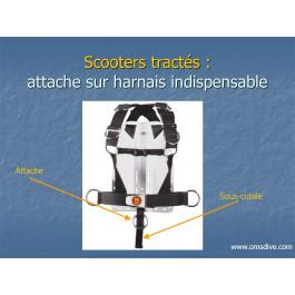 Sangle sous-cutale 50mm anneau scooter OMS