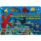 Plaquettes immergeables, Découverte Méditerranée