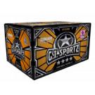 Carton billes GI Sportz 4 étoiles Tournament